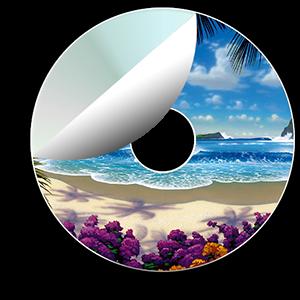 mini-cd-etiket-baski
